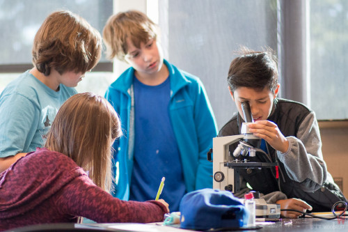 Students in science class looking in microscope