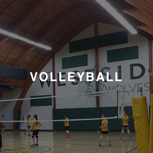 """VOLLEYBALL"" text over an image of students standing on a volleyball court"